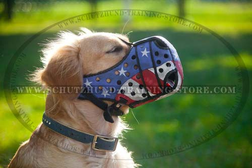 Walking Dog Muzzle