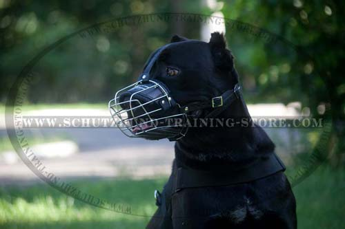 Breathable Dog Muzzle
