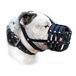 Fashionable well ventilated leather dog muzzle