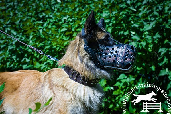 Tervuren leather muzzle with rustless hardware for basic training