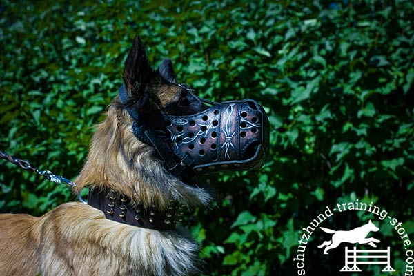 Tervuren leather muzzle of genuine materials with traditional buckle for daily walks