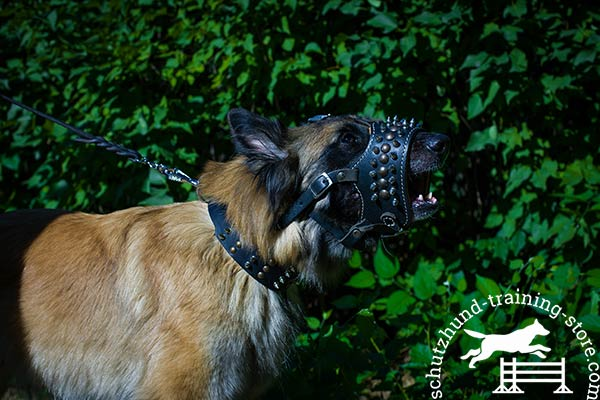 Genuine leather Tervuren muzzle