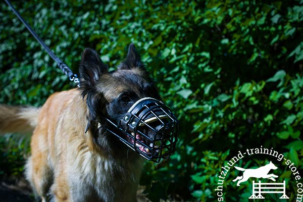 Basket design wire Tervuren muzzle