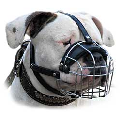 Appropriate wire basket dog muzzle for Schutzhund