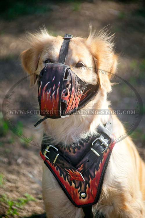 Everyday Leather Dog Muzzle with Good Air Flow for Golden Retriever