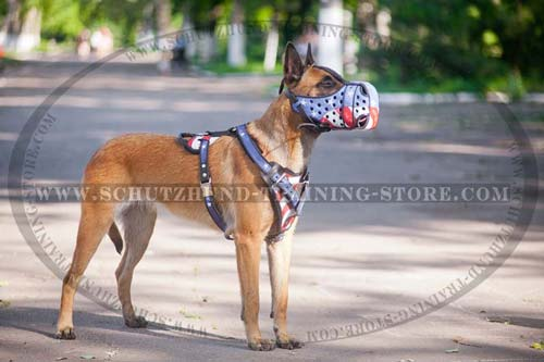Art Leather Belgian Malinois Muzzle Made of Full Grain Leather