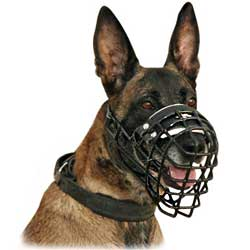 Wonderful wire dog muzzle covered with rubber