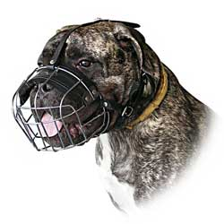 Fine wire cage muzzle for working dogs