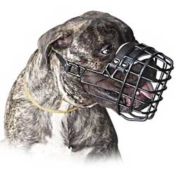 Extremely comfortable winter wire cage muzzle
