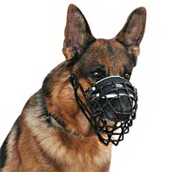 Wire cage winter dog muzzle