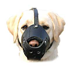 Smooth everyday leather dog muzzle