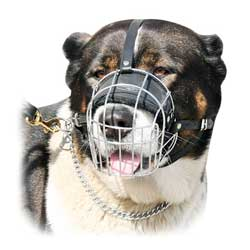 Steel basket handrafted dog muzzle