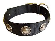 Designer Nylon Dog Collar with Silver Conchos - Extra Strong Training Collar