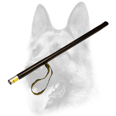 Extremely lightweight dog tool