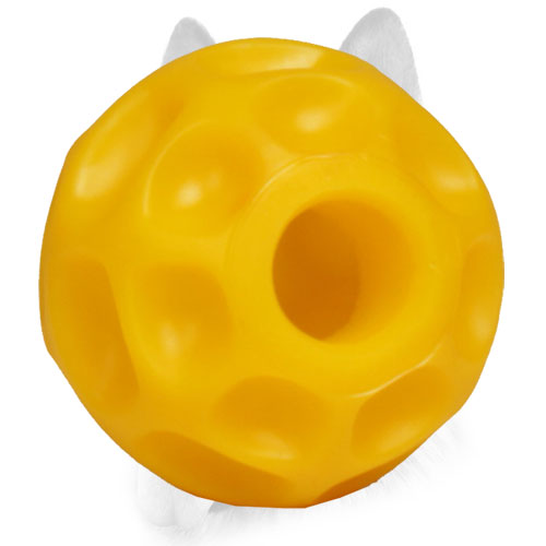 Bright innovative design of dog ball