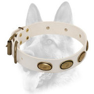 Designer Brass Covered Ovals Decorated White Leather Dog Collar for Schutzhund