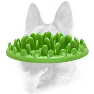 """Green Lawn"" Interactive Slow Canine Feeder (Big Size) for All Dog Breeds"