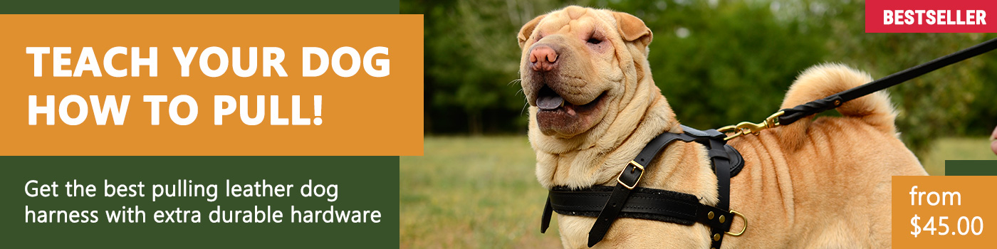 Pulling Leather Dog Harness-Any Dog Breed Training Harness